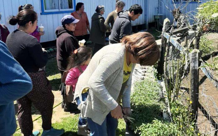 Curaco de Vélez: agricultores incursionaran en cultivos no tradicionales.