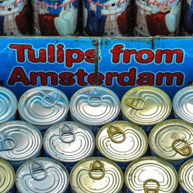 RC 81: Tulips in a CAN!