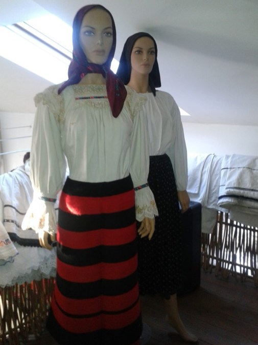 muzeu-feleac7-1024x768