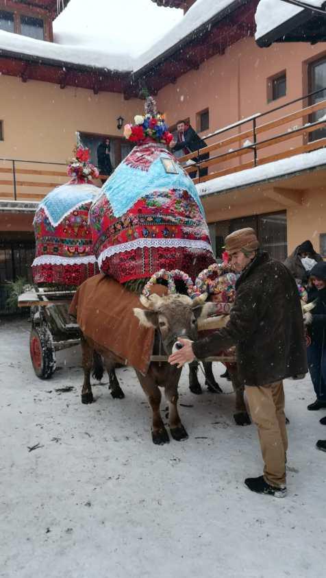 Udatul Ionilor, Tălmaciu, județul Sibiu
