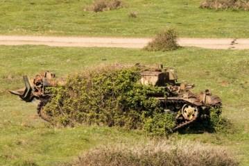 tank6_72130300
