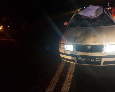 accident noaptea mk
