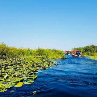 Delta Dunarii Asociatia Turism Delta Dunarii 12