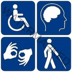 imagen que muestra los 4 tipos de discapacidad