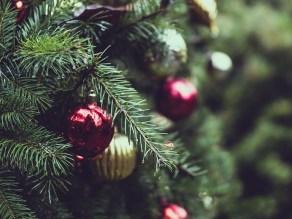 Χριστουγεννιάτικο δέντρο, christmas tree