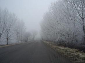 """Βασίλη Κιουγλού """"Χειμώνας 2018 στον Έβρο...στον δρόμο προς το χωριό Καβύλη... τα δέντρα στολισμένα όχι με χιόνι αλλά με πάχνη..."""""""