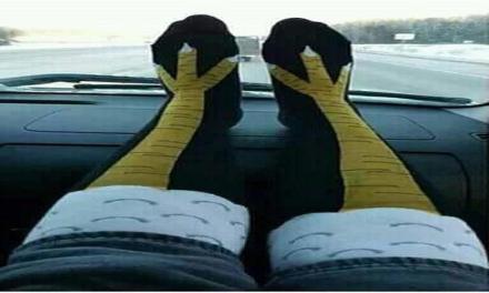 Strane calze da donna argentine.