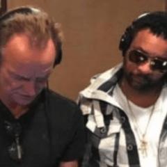 "Shaggy e Sting insieme per ""don't make me wait"""