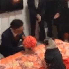 La proposta di matrimonio rovinata dal cucciolo (video)