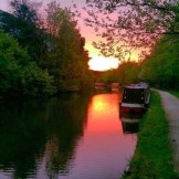 DAY 32 - Sun 2nd Aug - Greenford by @westlondon_urban_fishing