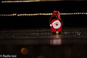Cantec de stea 2015_259