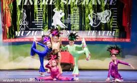 Concurs National Dans Botosani - Tinere Sperante - Clubul Arlechin- 17 iunie 2016 (115 of 570)