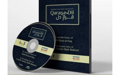 The Album Launch of Qarar e Dil