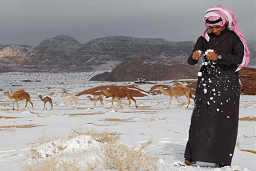 Snow covers Saudi Arabia's Aseer region