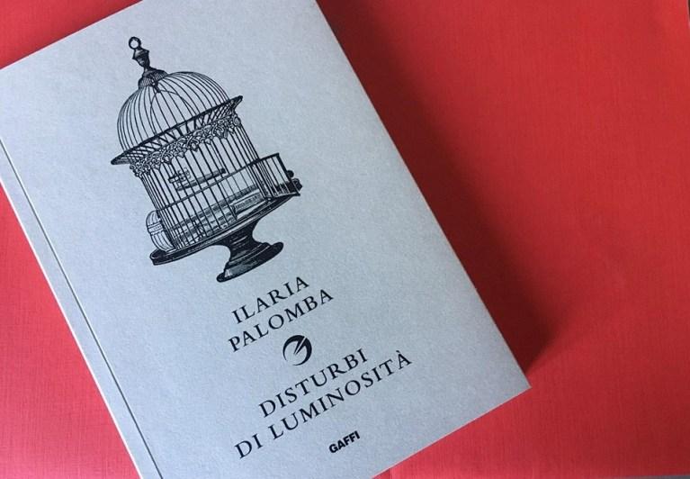 """Scrivere le Fragilità: una riflessione/recensione di """"Disturbi di Luminosità"""" di Ilaria Palomba"""