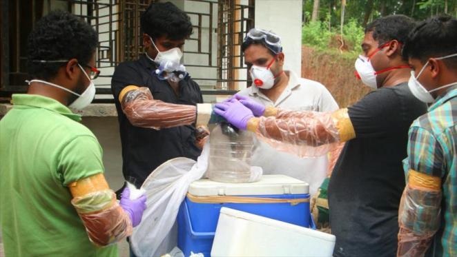 Cinco muertos y 100 en cuarentena por virus Nipah en sur de India - 07240042_xl-300x169