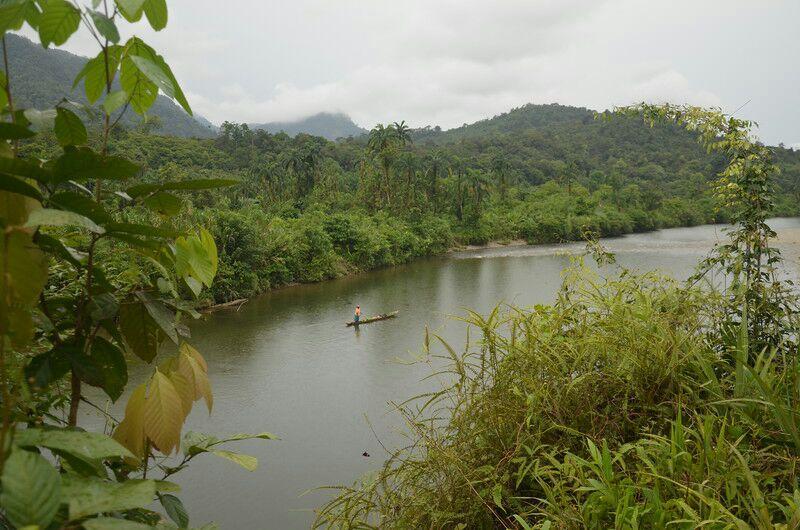 Urgente: Cuatro líderes sociales fueron secuestrados y asesinados en el río Naya - río-Naya