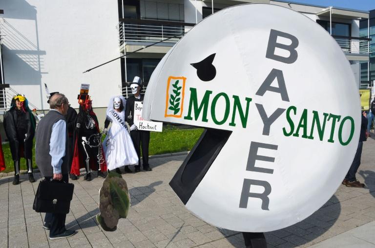 Fallo contra Monsanto en EEUU golpea a Bayer: pierde US$12.500 millones