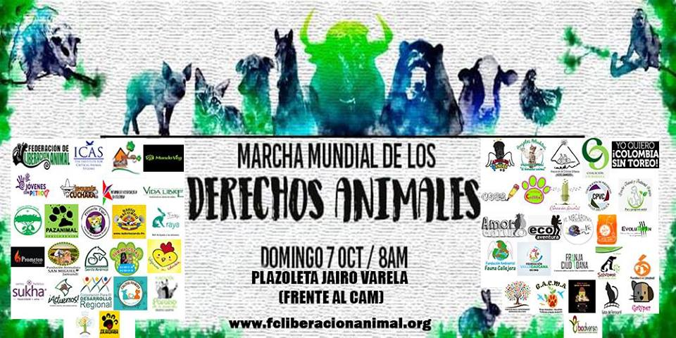 Marcha Mundial de los Derechos Animales – Cali 2018 - 42504746_886967878093676_7466141701623513088_n