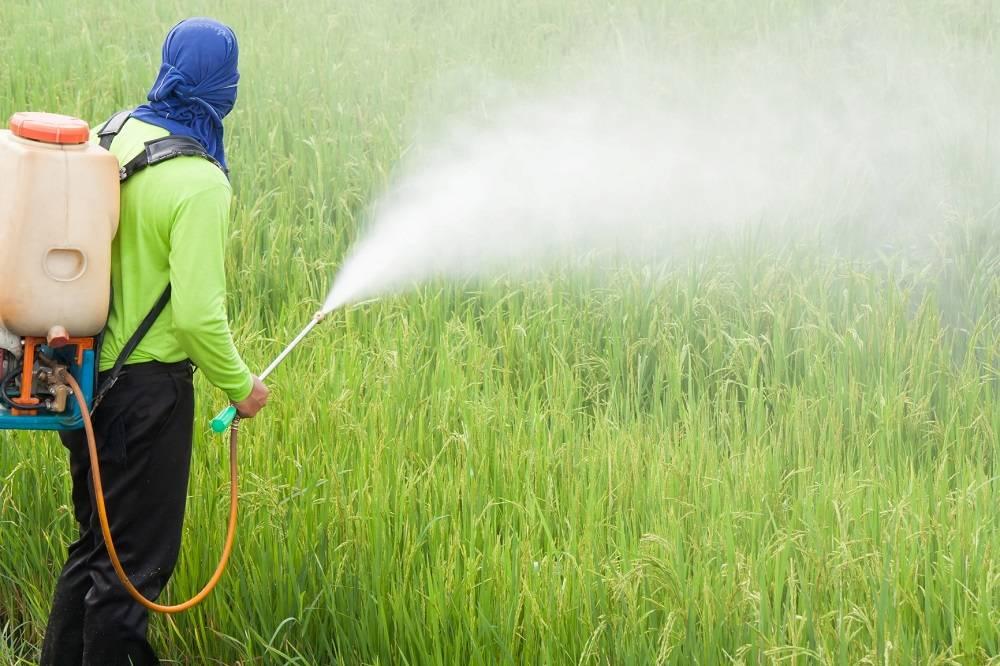 Está em discussão em Santo Antônio das Missões o uso de agrotóxicos perto do perímetro urbano