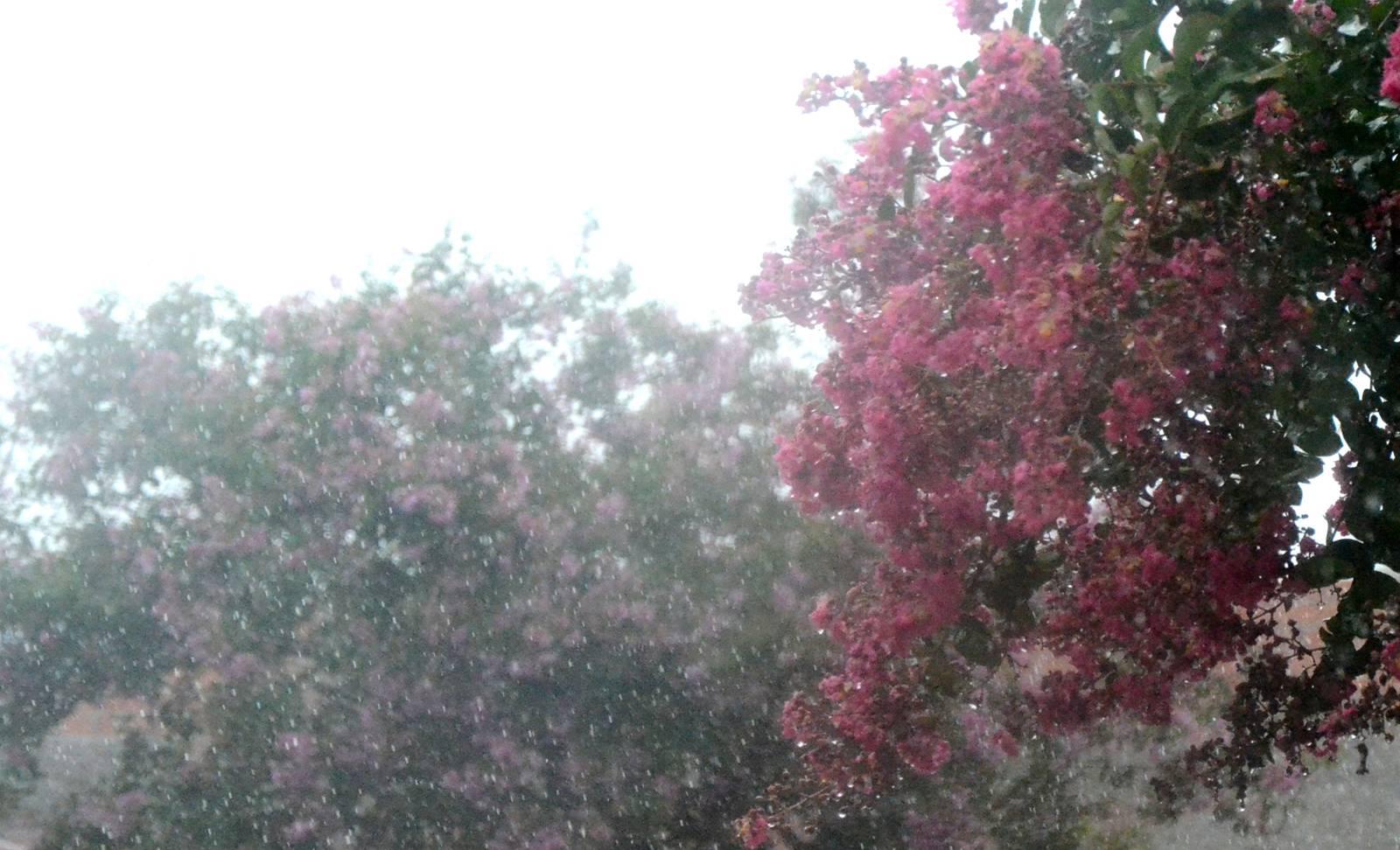 Semana começa com expectativa de chuva e queda na temperatura