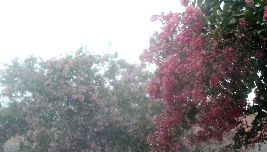 Passagem de frente fria traz esperança de chuva para esta semana