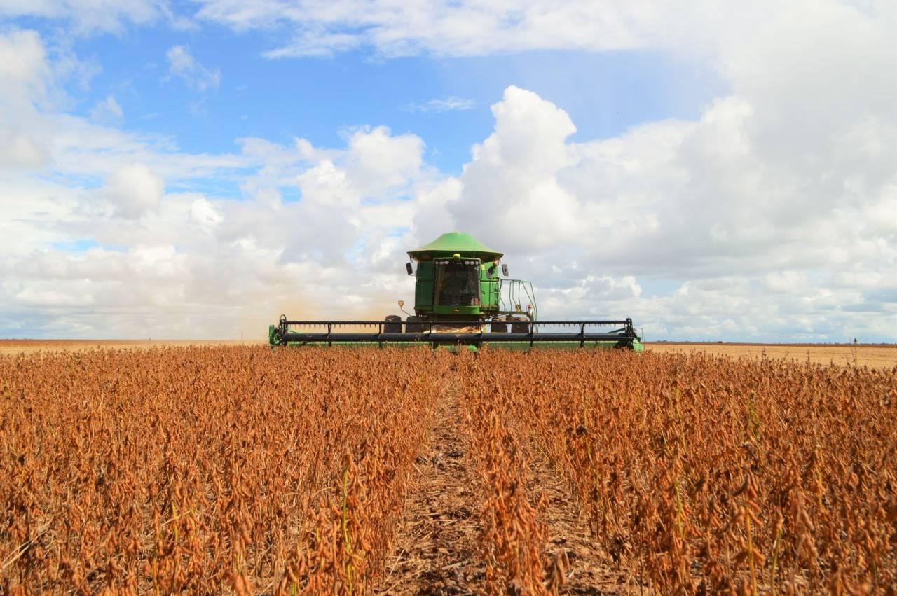 Área plantada de soja atinge 76 mil hectares em São Luiz Gonzaga