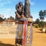 Beni: encore un cas d'enlèvement signalé dans les environs de Mangina