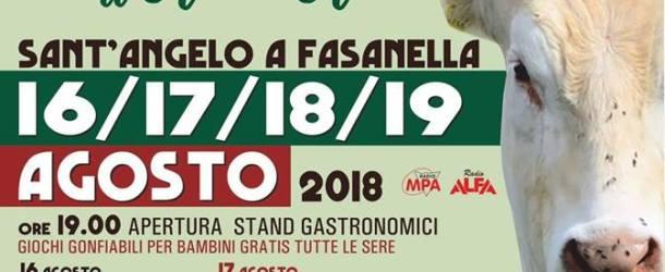 A Sant'Angelo a Fasanella 4 Festa del Vitello Alburnino e dell'olio d'oliva