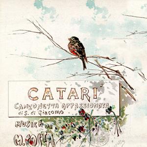 Catarì