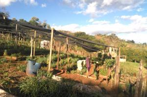 Familias agricultoras que viven hace 30 años en Colonia Nueva Esperanza reclaman que el Estado regularice las tierras