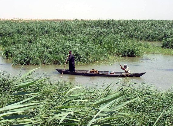 Marsh Arabs in a mashoof