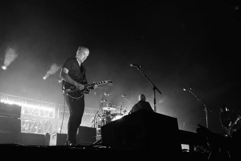 Image result for pixies wellington