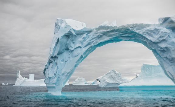 Voice Of The Iceberg