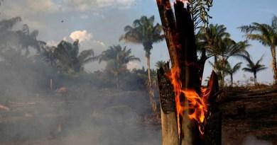 Incendio en Amazonia: El humo podría propagarse al territorio porteño