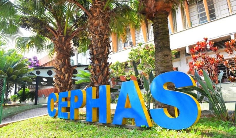 Cephas