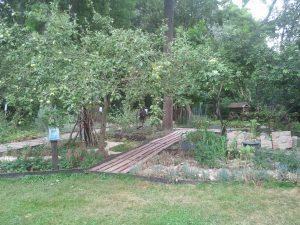 Vue sur le jardin situé à proximité de la maison forestière