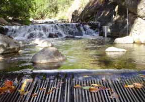 Water in Mauis Iao Stream doesnt make it past Wailuku Agribusiness diversion grate.  Source: John Duey