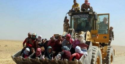 FOTO-Rescate Yazidis