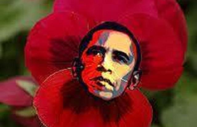 """Obama sigue en el """"flower power"""""""