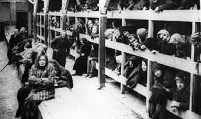 Netuním al majané ha-hashmadá Auschwitz