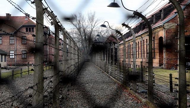 La banalización del Holocausto en los medios de comunicación