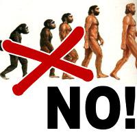 Cattolici ed evoluzionisti. Una risposta al prof. Facchini.