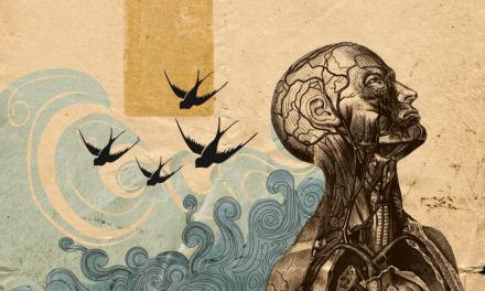Darwinismo e Dottrina Cattolica
