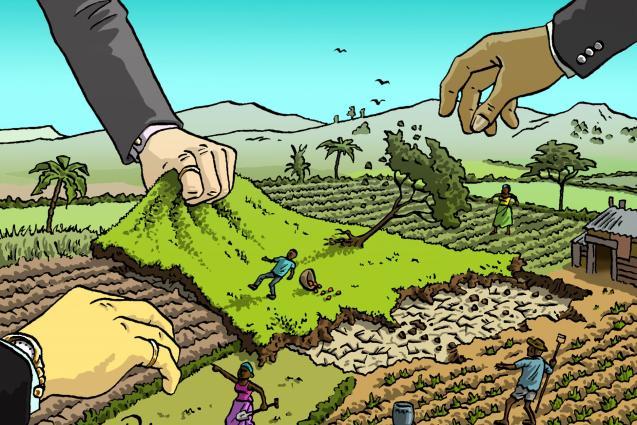 Il Land Grabbing ed il saccheggio dei diritti umani