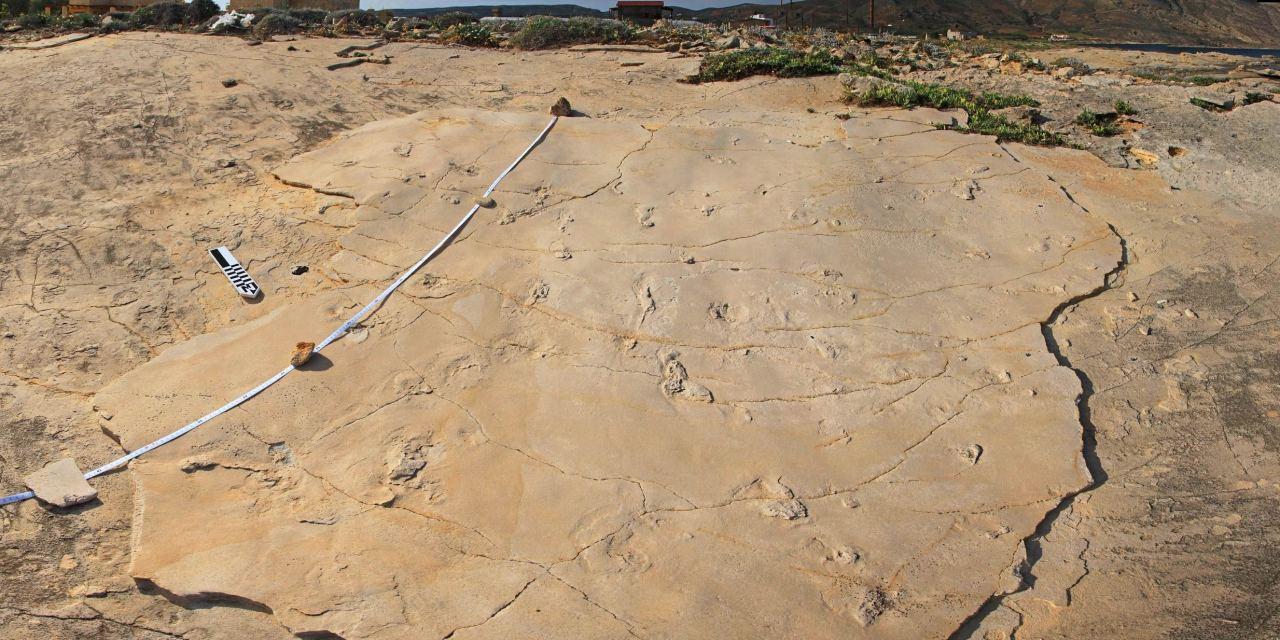 Scoperte a Creta impronte di forma umana risalenti a 5,7 milioni di anni fa