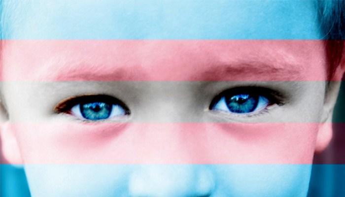 «Gruppi Trans politicizzati mettono a serio rischio i bambini» dice l'esperto.