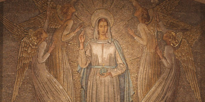 [DIFUNDE TU FE CATOLICA] Tradicional Novena a la Inmaculada Concepción de María Nuestra Reina y Señora. Día 9