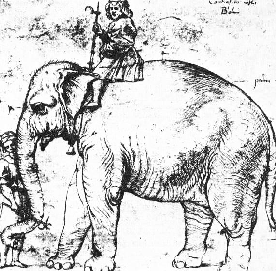 Annone, l'elefante di Leone X