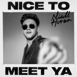 NIALL HORAN  – NICE TO MEET YA